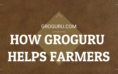 How GroGuru Helps Farmers