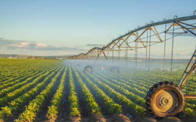 Soil Moisture Monitoring Basics
