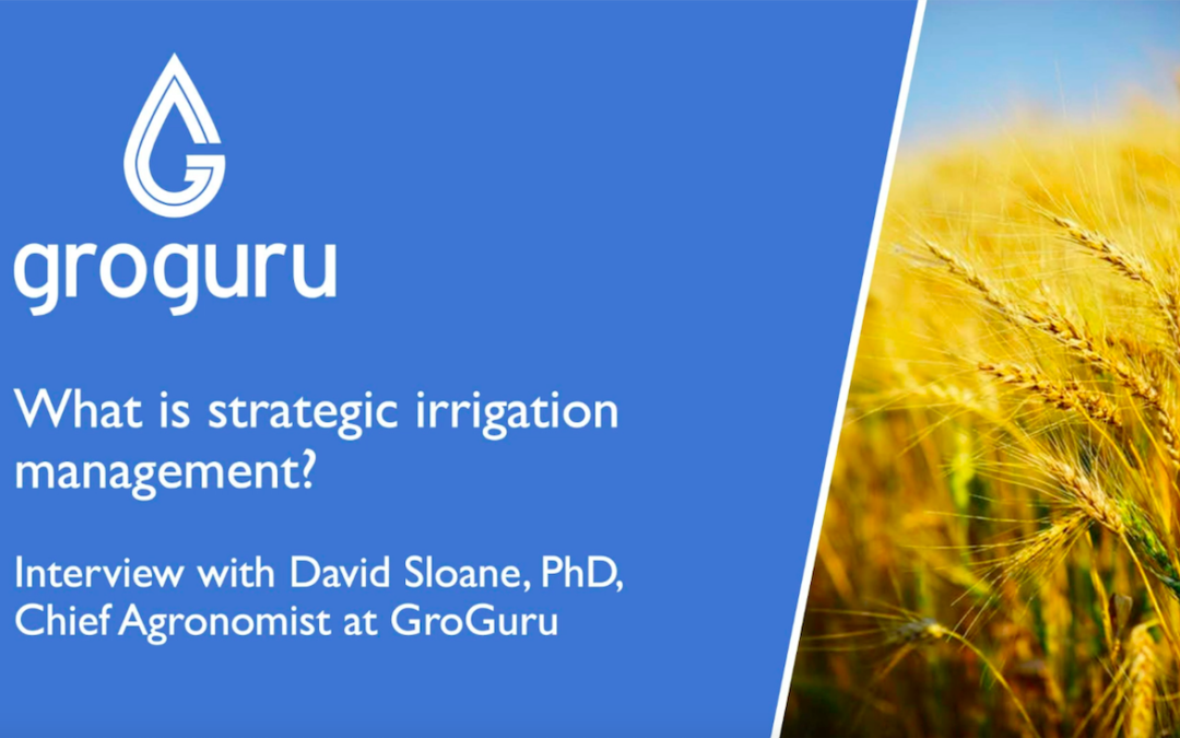 What Is Strategic Irrigation Management?