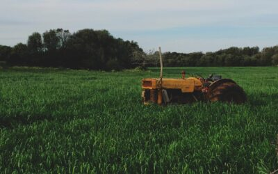 Why Should Farmers Be Concerned with Soil Salinity?