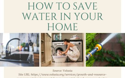 Save the Planet: How to Save Water in Your Own Home