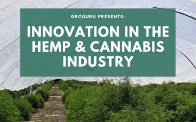 GroGuru Offers Innovation to the Industrial Hemp & Cannabis Industry