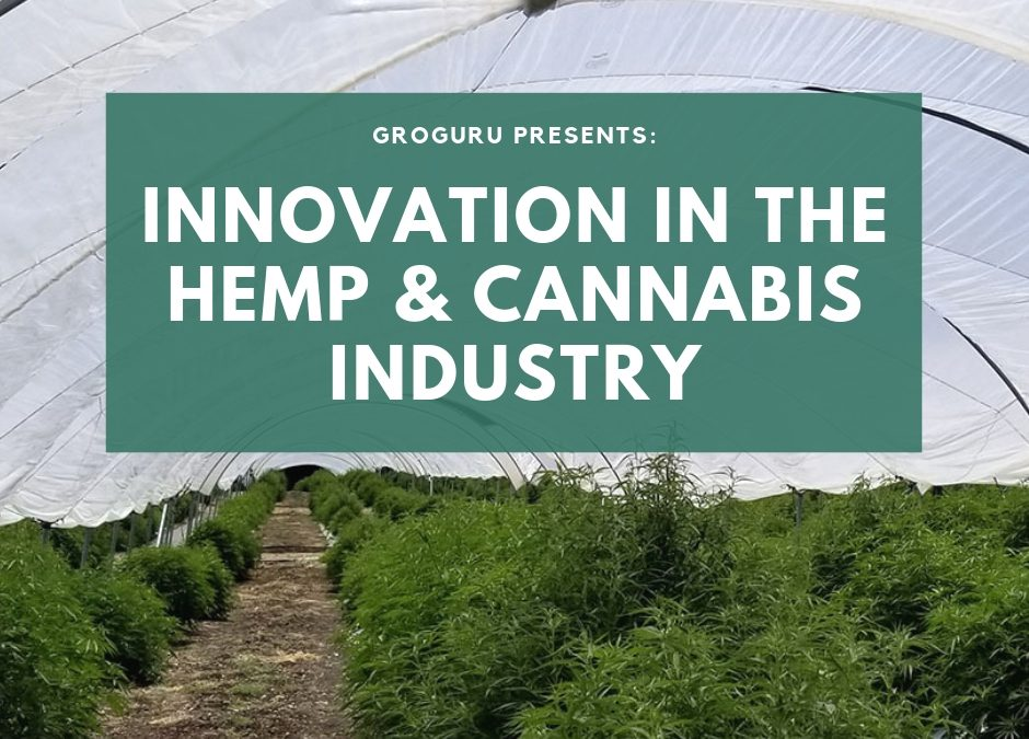 GroGuru Offers Innovation to the Industrial Hemp & Cannabis Industry