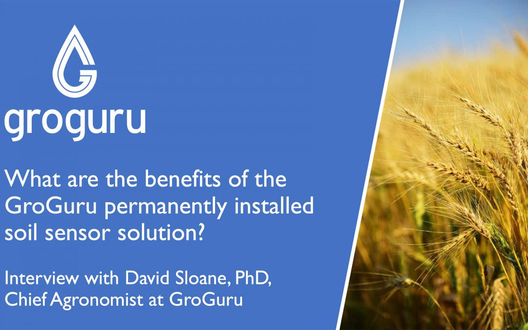 Benefits of the GroGuru Permanently Installed Soil Sensor Solution